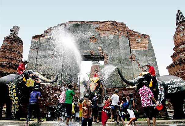 elephants sonkran water festival